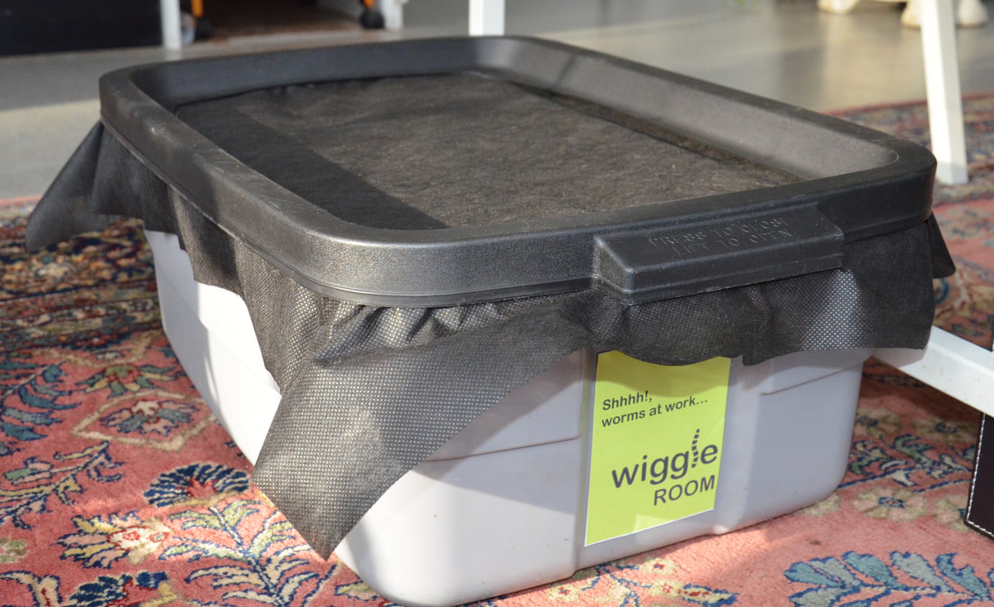 Start Your Own Worm Bin - Wiggle Room - Vermicomposting and